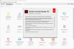 Adobe Acrobat Reader DC 17.012.20098.44270 Portable by XpucT (2017) [En/Ru]