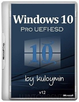 Windows 10 Pro (x86-x64) 1709 by kuloymin v12 (esd) (2018) [Rus]
