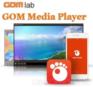 GOM Player Plus 2.3.30.5289