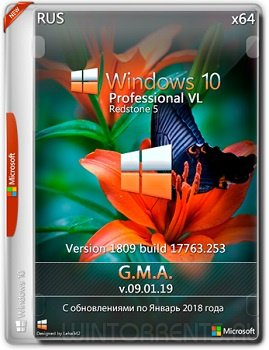 Windows 10 Pro (x64) VL RS5 G.M.A. v.09.01.19