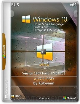 Windows 10 5in1 (x64) v.1809 by kuloymin v17.1
