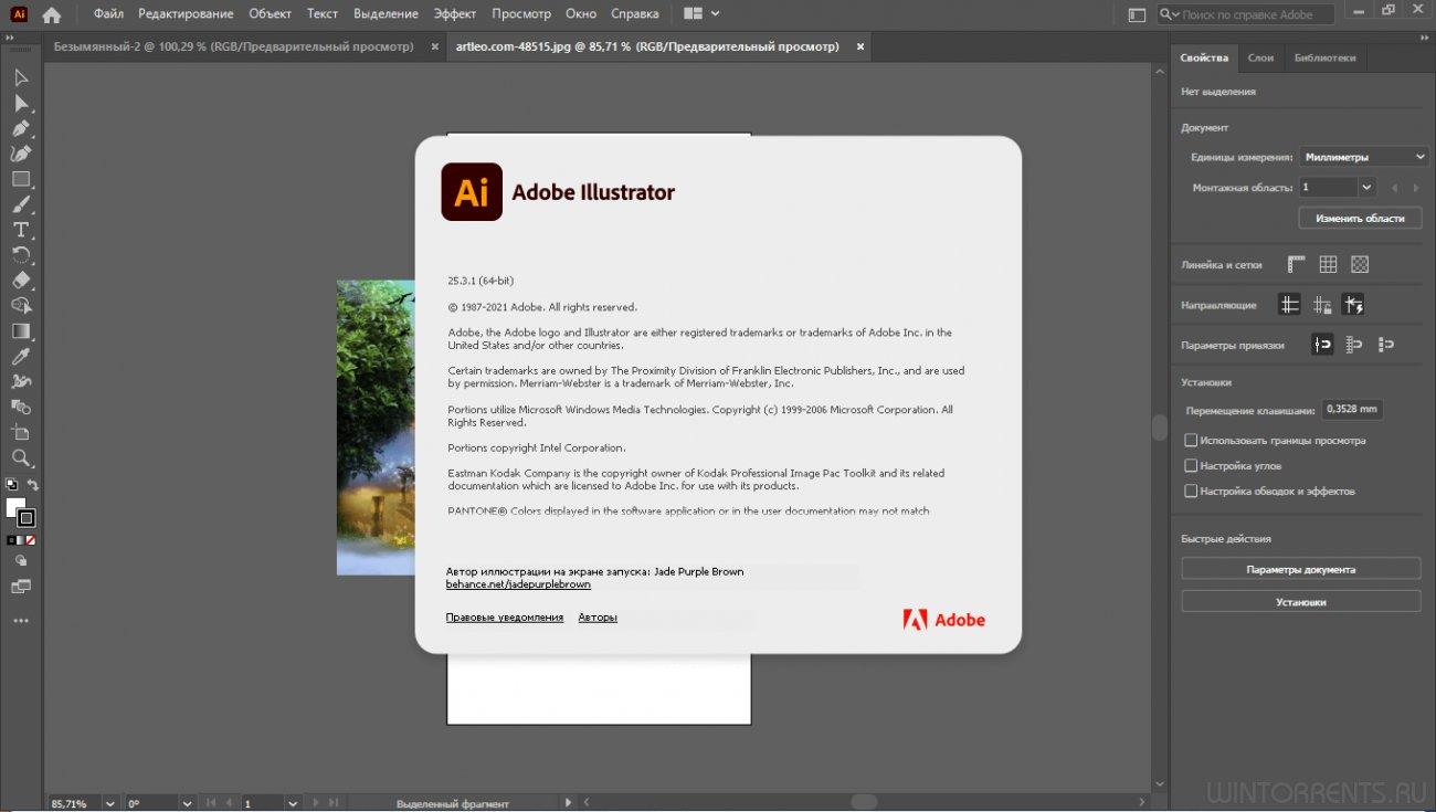 Adobe Illustrator 2021 25.3.1.390 RePack by KpoJIuK